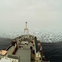 New project to study the impacts of climate change on Arctic ecosystems