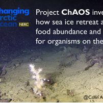 UK scientists track environmental change on the seafloor of Europe's Arctic backyard, the Barents Sea