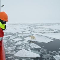 Vegan at Sea-gan: The Arctic Ocean